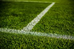 Green bright colorful grass pitch of football stafium, close up with beautiful bokeh. And stripes royalty free stock photo