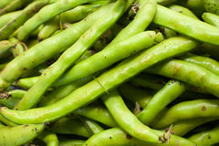 Green broad raw and fresh heap in market Stock Image