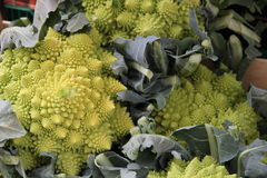 Green Broccoflower heads. On a market stall royalty free stock images