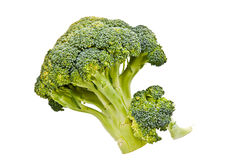 Green broccoli Royalty Free Stock Photo