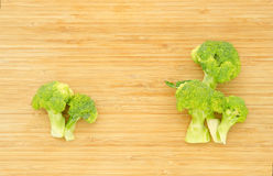 Green broccoli cabbage flowers Stock Image