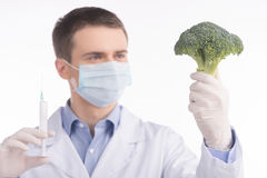 Green broccoli in genetic engineering laboratory. Stock Image