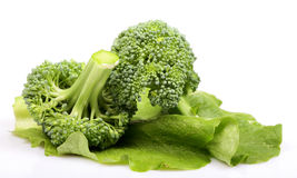 Green broccoli and lettuce diet Royalty Free Stock Photos