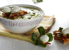 Green broccoli pea soup Stock Image