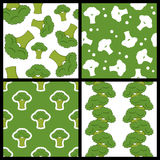 Green Broccoli Seamless Patterns Set Royalty Free Stock Photos