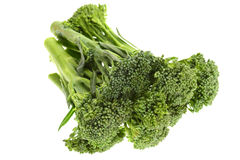 Green Broccoli Shoots Stock Image