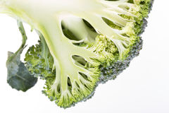 Green broccoli vegetable isolated Stock Photo