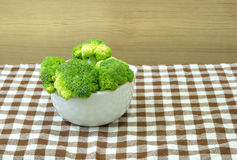 Green broccoli in white bowl Stock Photography
