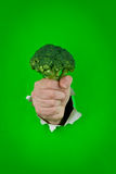 Green broccolli Stock Photo