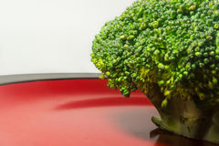 Green Brocolli on Red and Black Plate on White Background. Fresh Green Brocolli on Red and Black Plate on White Background Royalty Free Stock Photography