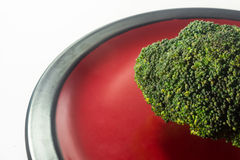 Green Brocolli on Red and Black Plate on White Background. Fresh Green Brocolli on Red and Black Plate on White Background Stock Images