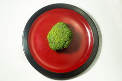 Green Brocolli on Red and Black Plate on White Background. Fresh Green Brocolli on Red and Black Plate on White Background Royalty Free Stock Images
