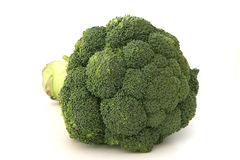 Green brocolli on white background Royalty Free Stock Photos