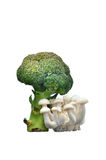 Green Brocolli with white shimeji mushroom Royalty Free Stock Images