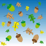 Green and brown acorn. On blue - white background  with colored leafs.Vector illustration Stock Photos
