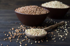 Green and brown buckwheat Royalty Free Stock Images
