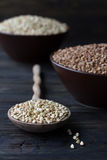 Green and brown buckwheat Stock Photography