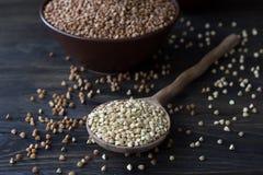 Green and brown buckwheat Stock Photos