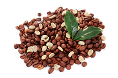 Green and brown coffee beans Stock Photos