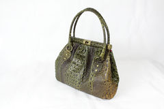 Green and brown coloured crocodile skin handbag royalty free stock photography