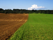 Green and brown field Royalty Free Stock Photography