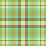 Green and brown plaid Royalty Free Stock Photos