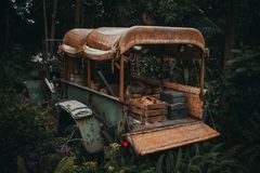 Green and Brown Vehicle in Forest stock images