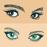 Green and brown womens eyes Royalty Free Stock Photo