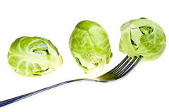 Green brussel sprouts Stock Photos
