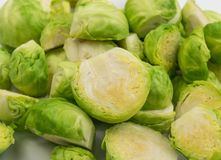 Green Brussel Sprouts. Chopped Green Brussel Sprouts Texture Closeup. Cabbage Background Top View Stock Image