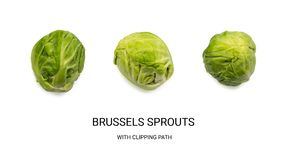 Green Brussel Sprouts Isolated. On White Background. Cabbage Plants Top View with Clipping Path Stock Photos