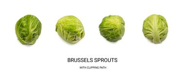 Green Brussel Sprouts Isolated. On White Background. Cabbage Plants Top View with Clipping Path Stock Images