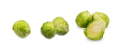 Green Brussel Sprouts Isolated. On White Background. Cabbage Plants Top View with Clipping Path Royalty Free Stock Photography