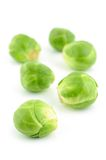 Green brussels sprouts Royalty Free Stock Photos