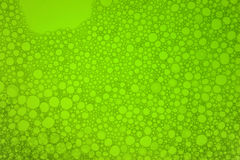 Green bubbles. From washing up liquid Stock Photography