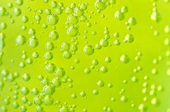 Green Bubbles Stock Images