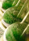 Green bubbles Royalty Free Stock Photos