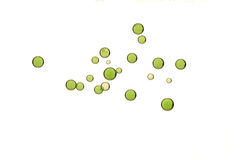 Green bubbles. Light green fizz bubbles isolated over a white backgrond Stock Photo