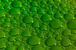 Green bubbles texture Royalty Free Stock Images