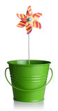 Green bucket Stock Image