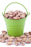 Green bucket of beans. Royalty Free Stock Photo