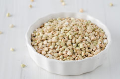 Green buckwheat Stock Image