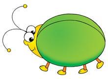Green bug Stock Photography