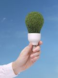 Green bulb. Female hand holding environmentally-friendly green bulb over blue sky - ecologic concept Royalty Free Stock Photography
