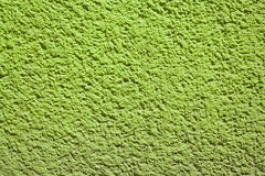 Green bumpy wall Stock Photography