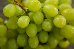 Green bunch of grapes with water droplets. Close-up of green bunch of grapes with water droplets Stock Images