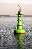 The green buoy on the water. The green navigation buoy at the entrance to the Port of Gdansk Royalty Free Stock Image