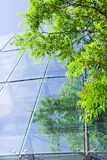 Green business building Stock Photography