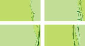 Green business card Stock Photos