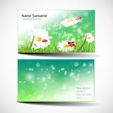 Green Business Cards Royalty Free Stock Photos